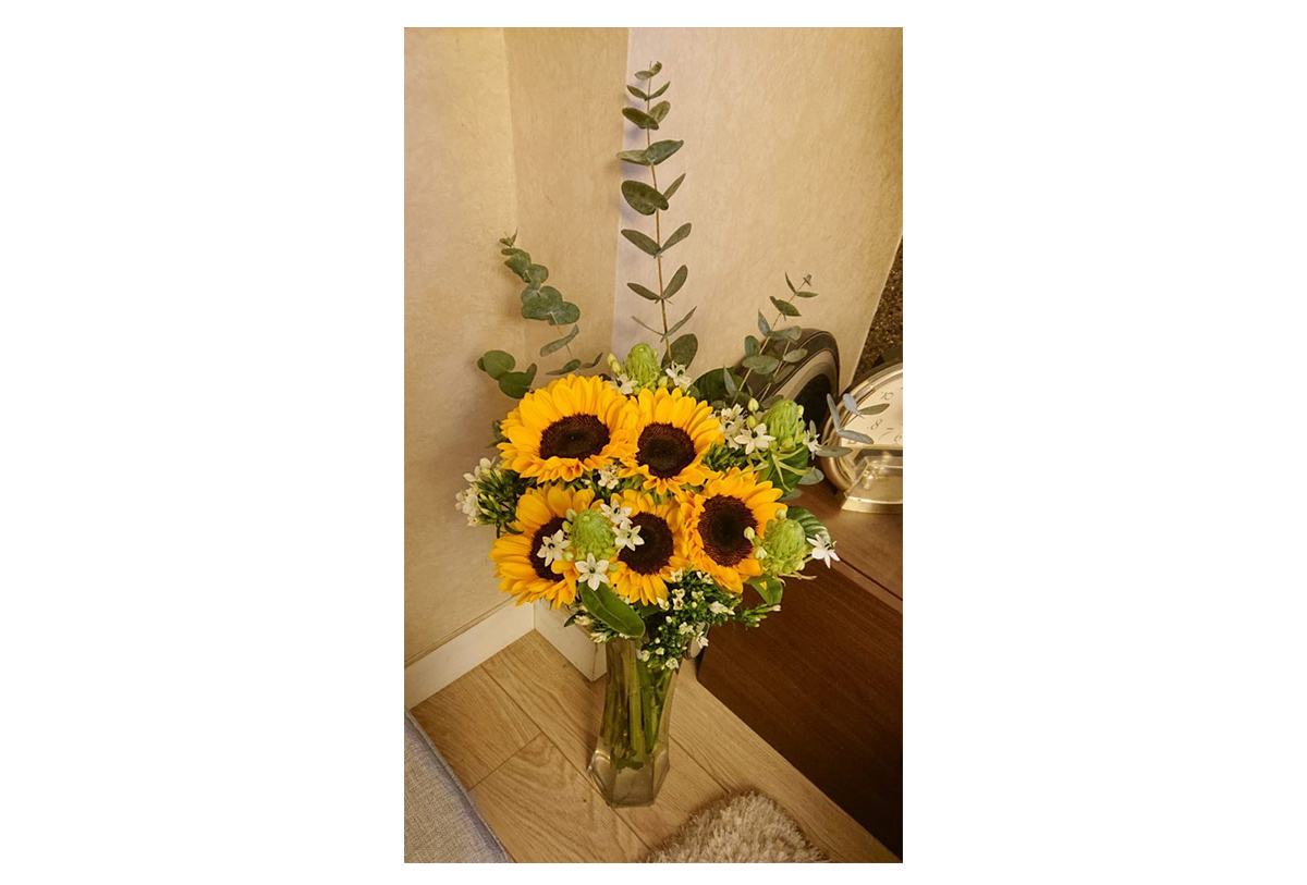 The lovely sunflowers he sent me.